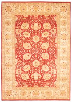 Pako Persian 18 Of 20